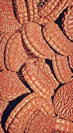 conditionnement biscuits